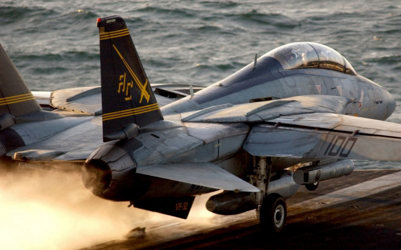 aircraft military F-14 Tomcat wallpaper
