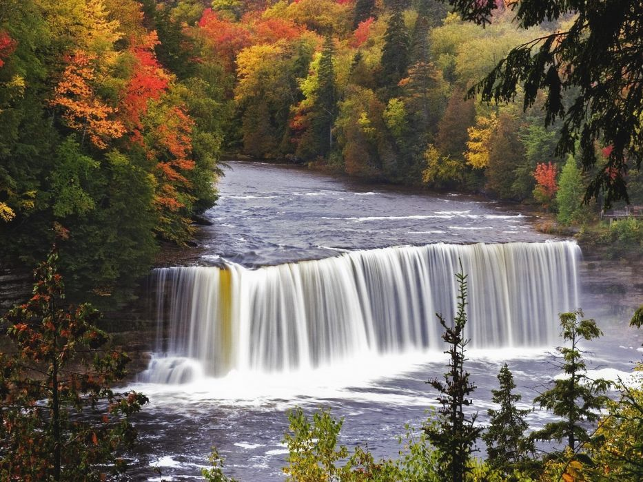 water landscapes nature trees wallpaper