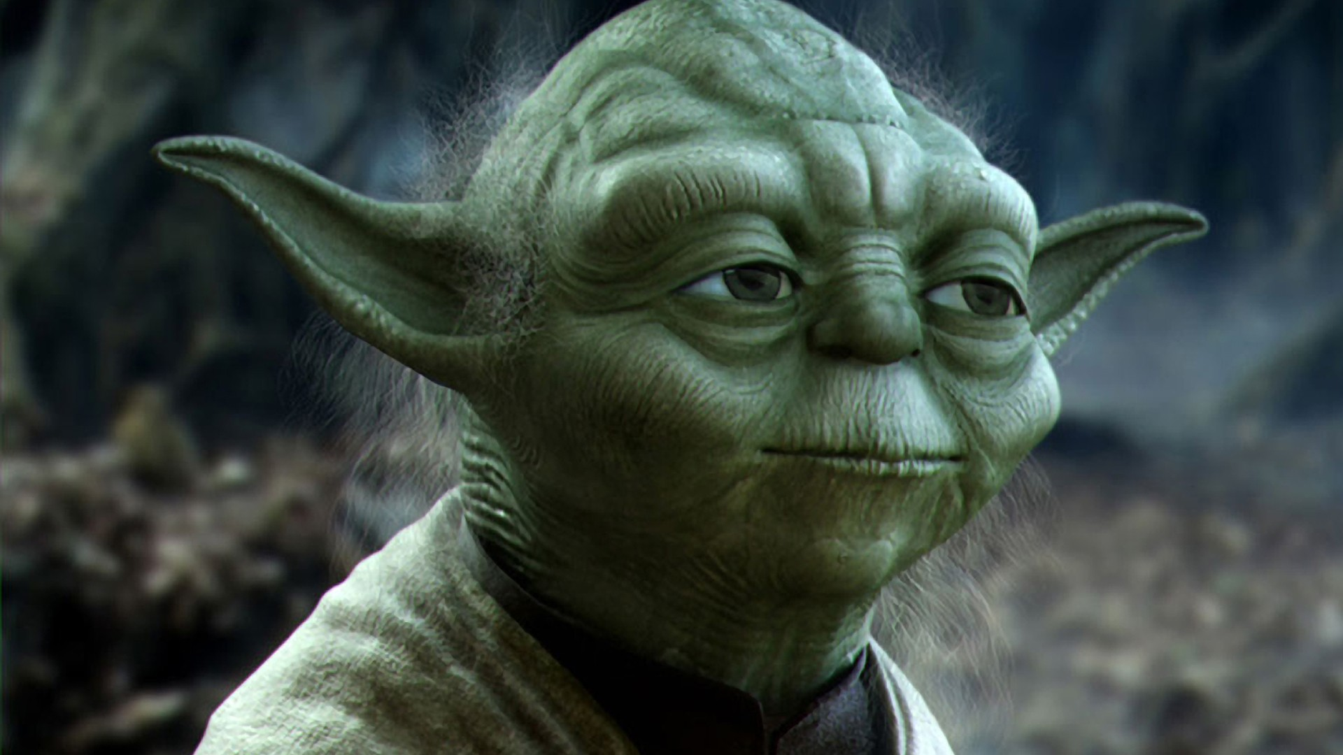 Star Wars Movies Forest Science Fiction Yoda 3d Render 3d Modeling Wallpaper 1920x1080 54579 Wallpaperup