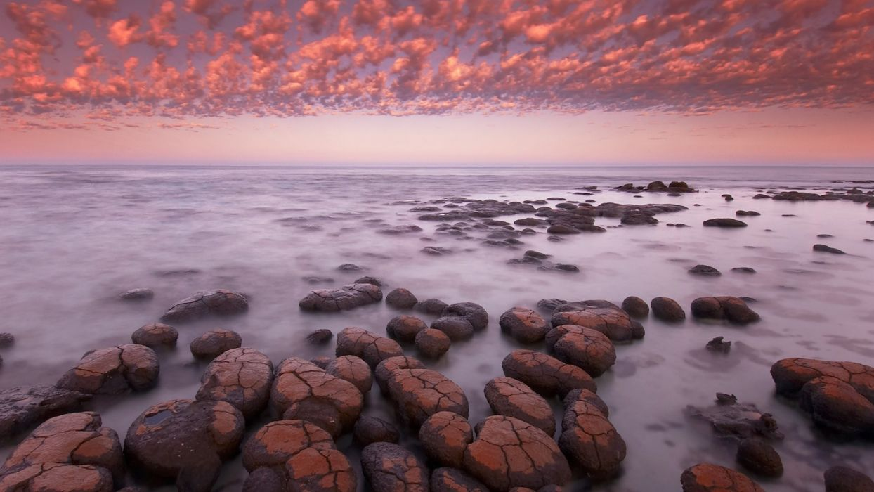 dawn sharks western Australia bay wallpaper