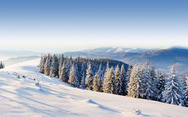 ice mountains winter snow trees forest day wallpaper