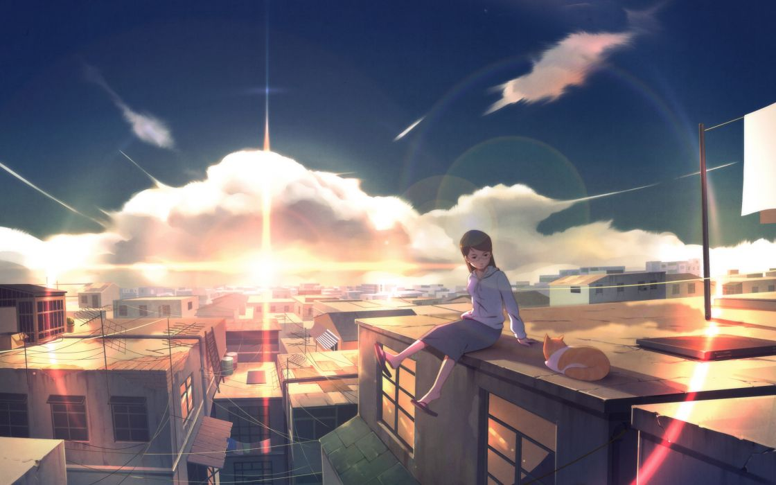 animal cat city clouds glasses original scenic skirt sky sunset wack wallpaper