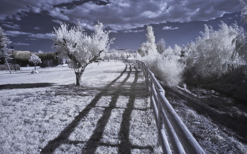 Infrared Landscape Nature trees fence wallpaper