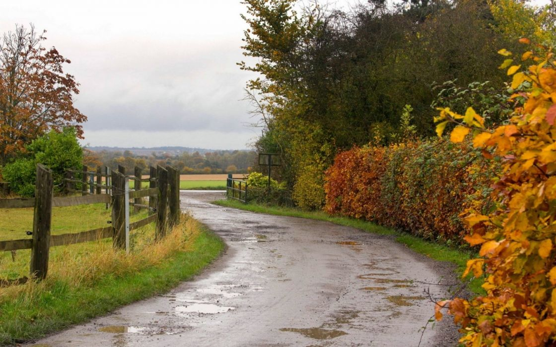 roads autumn fall rain wet water reflection fence landscapes trees wallpaper