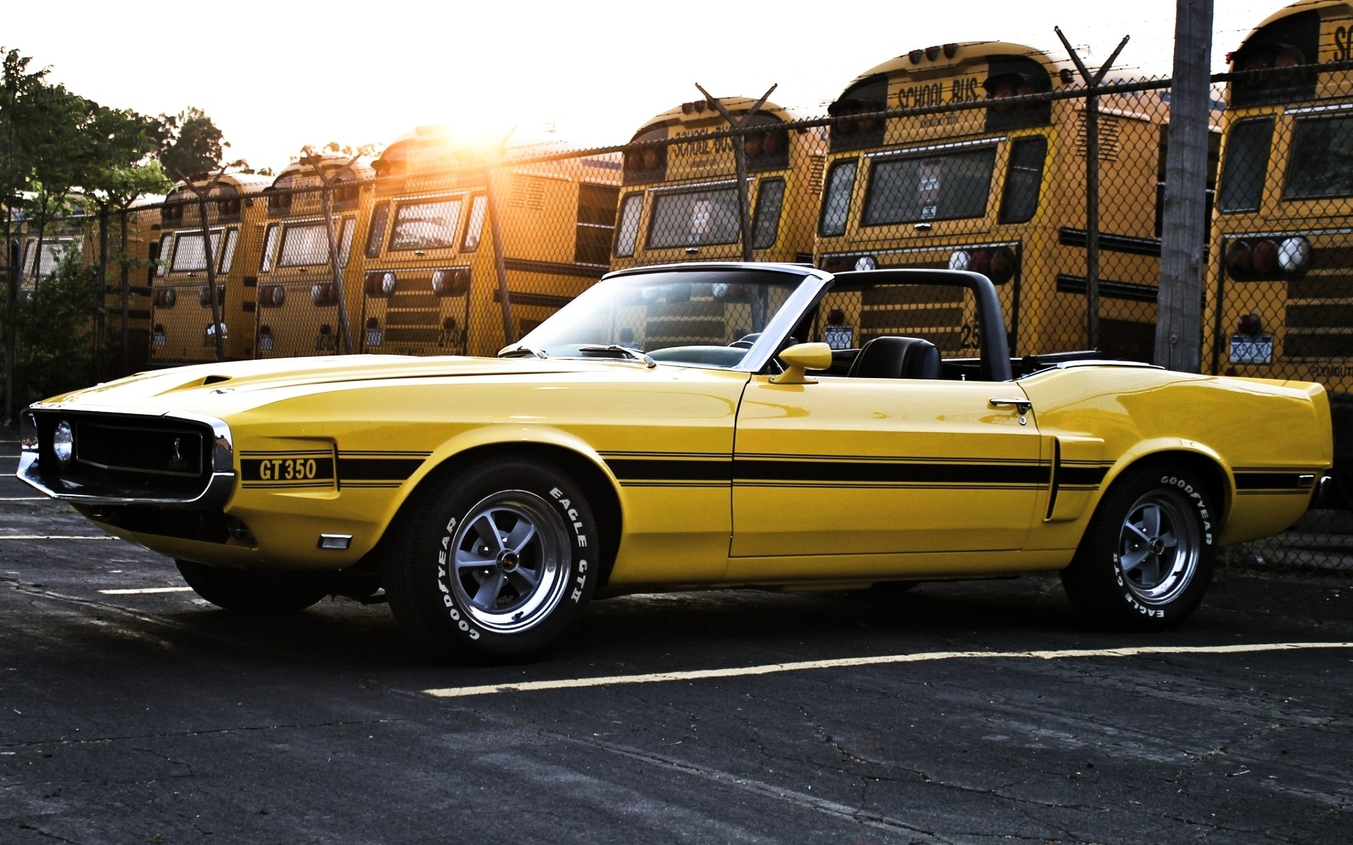 yellow cars muscle cars vehicles ford mustang shelby gt350 old cars yellow cars wallpaper 1920x1200 56058 wallpaperup - Old Mustang Muscle Cars