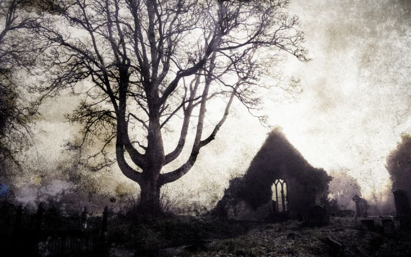 Tree Cemetery gothic buildings ruins cross landscapes wallpaper