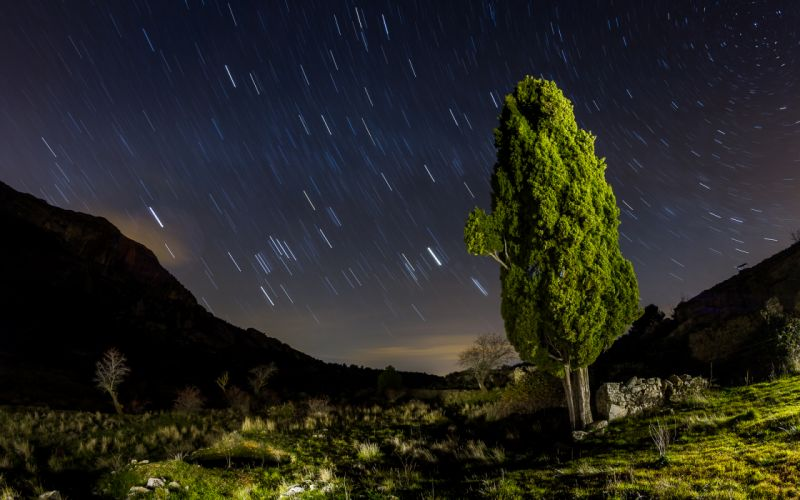 Tree Night Stars Timelapse sky landscapes mountains ruins wallpaper