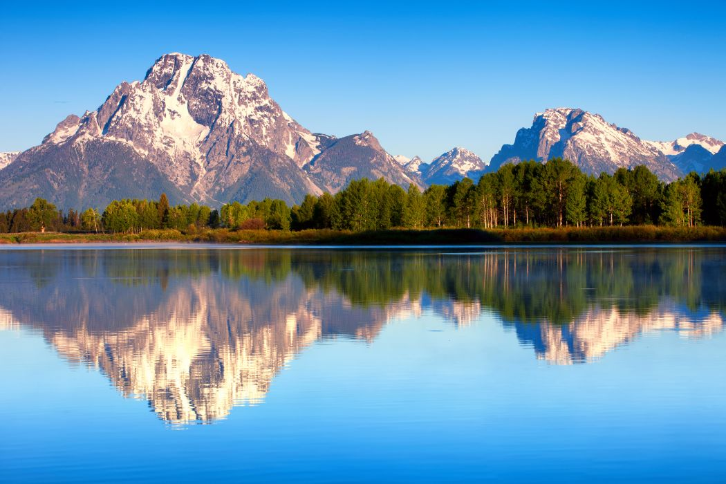 USA Wyoming Grand Teton National Park Mount Moran Lake Jackson nature summer morning forest reflection trees shore forest wallpaper