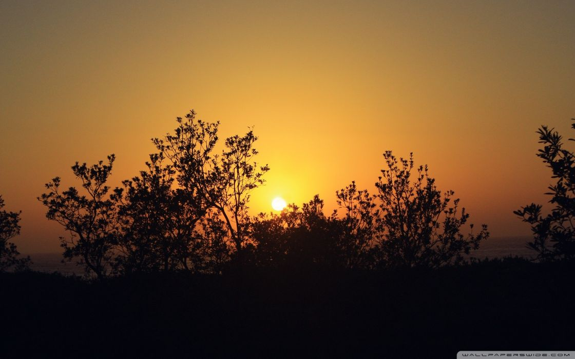 sunset summer wallpaper