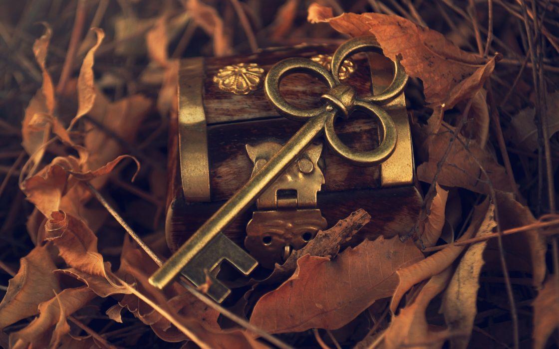 leaves keys wallpaper
