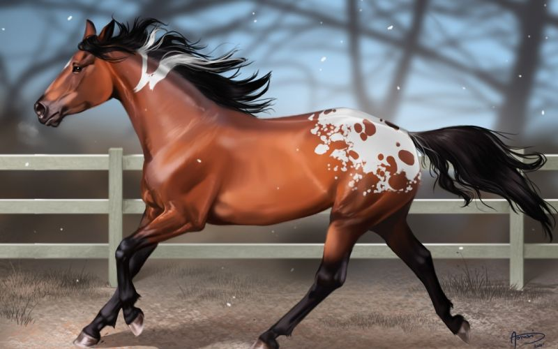 paintings snow animals horses artwork running wallpaper