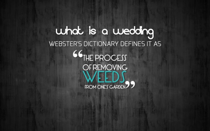 text quotes funny wedding wallpaper