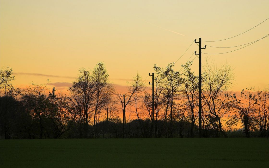landscapes nature trees power lines wallpaper
