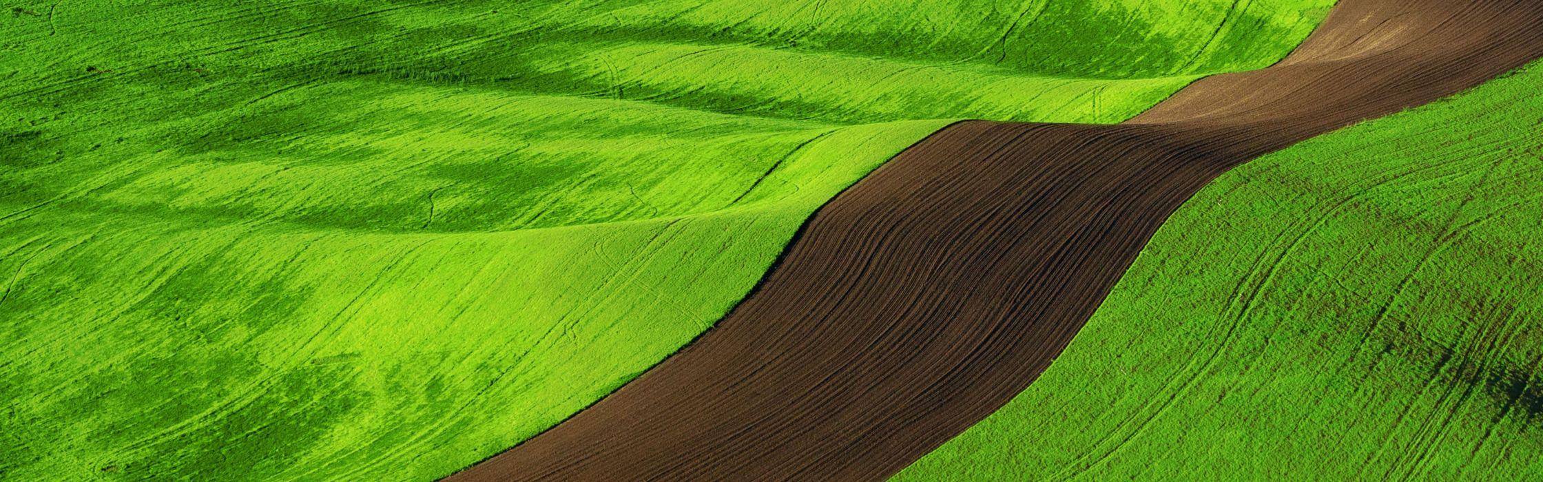 landscapes fields Windows 8 wallpaper