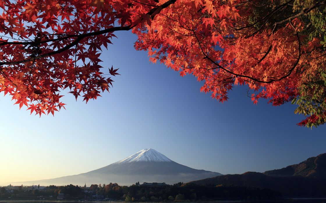 mountains Mount Fuji trees wallpaper