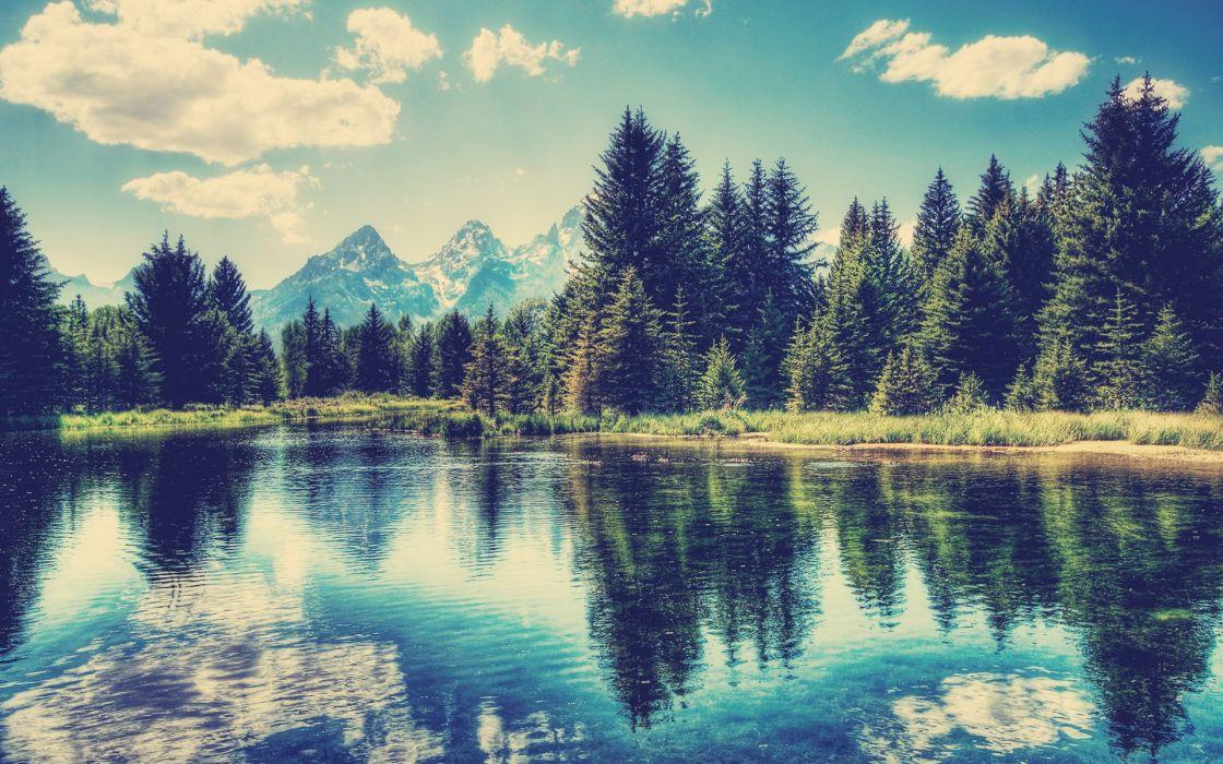 landscapes trees lakes wallpaper