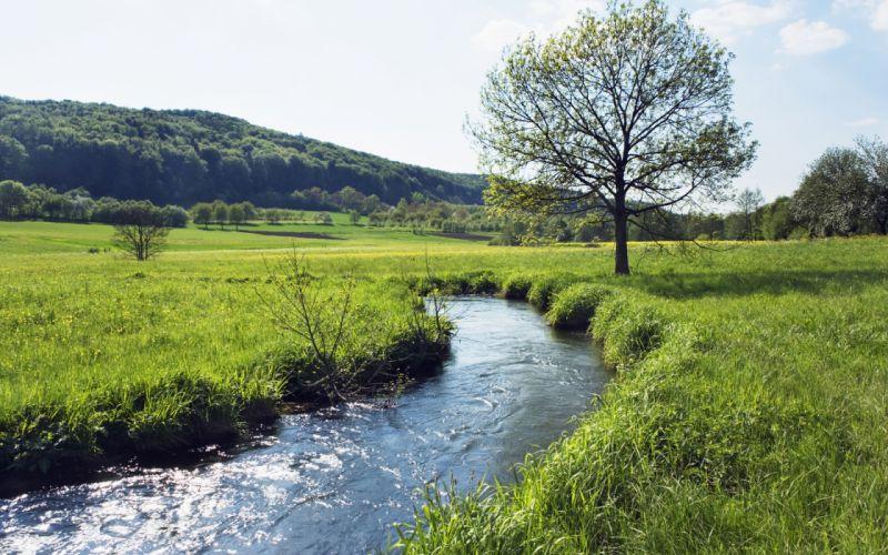 landscapes trees hills meadow rivers wallpaper