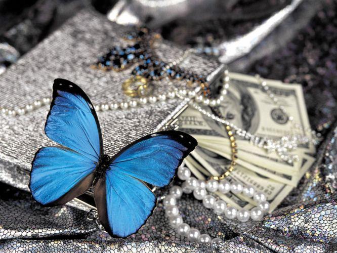 butterfly money wallpaper