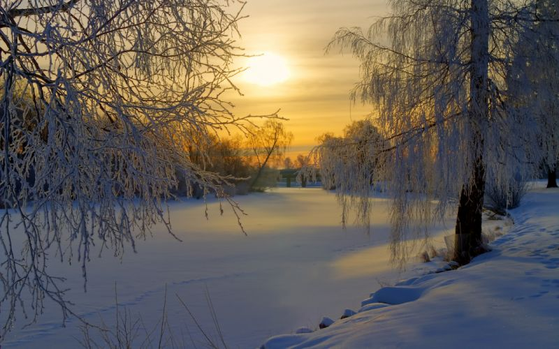 Sweden winter snow frost forest trees meadow morning sun sunrise rivers lakes sky clouds wallpaper