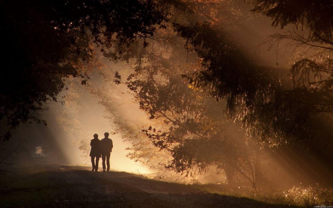 forest shadows trees sunlight couple love romance mood wallpaper