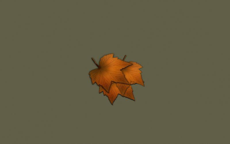 minimalistic leaves wallpaper