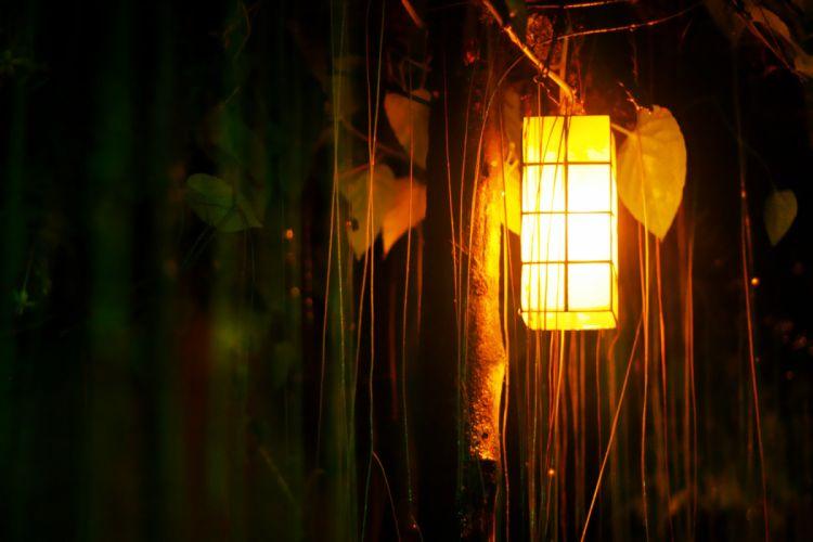 lanterns wallpaper