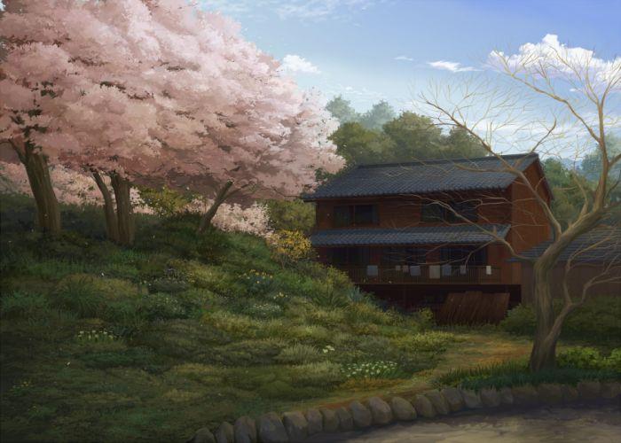 cherry blossoms grass juuyonkou original scenic tree wallpaper