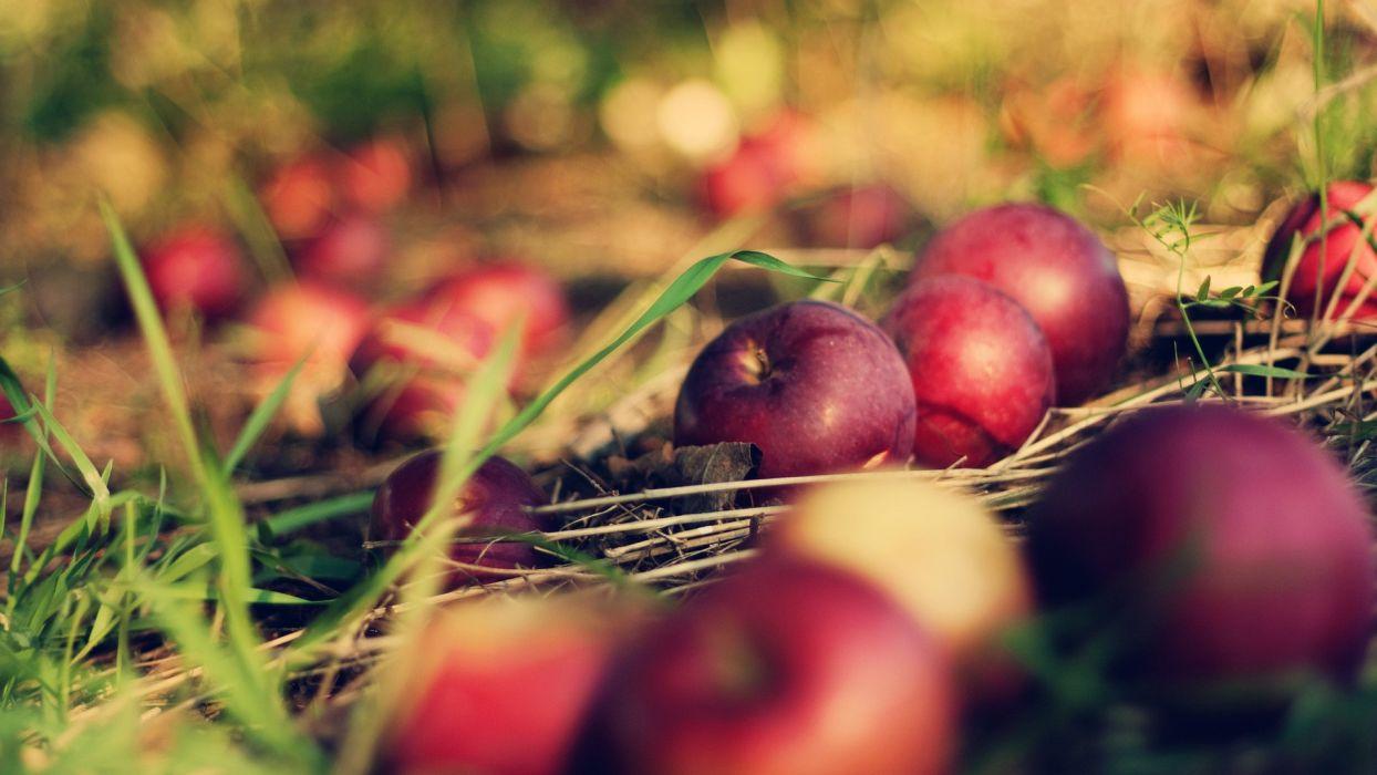 fruits grass apples wallpaper