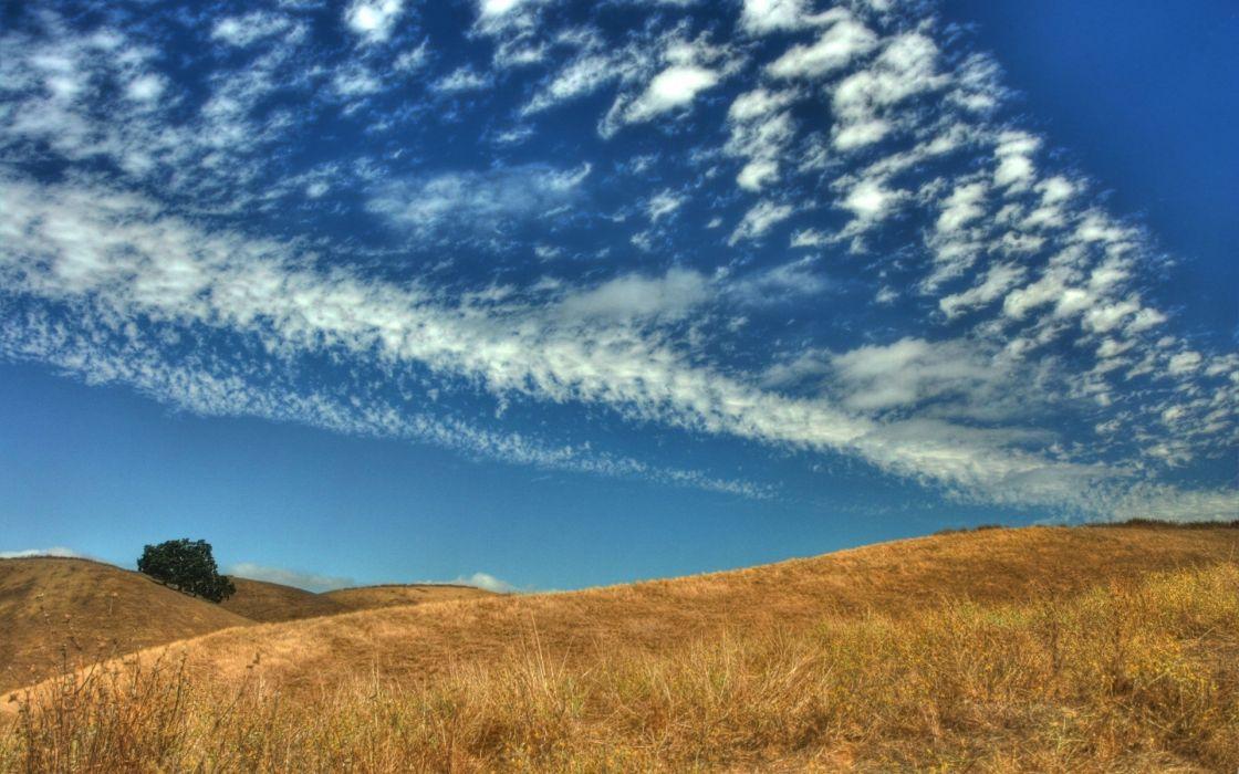 fields skyscapes wallpaper