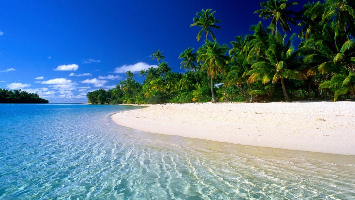 beach tropical wallpaper
