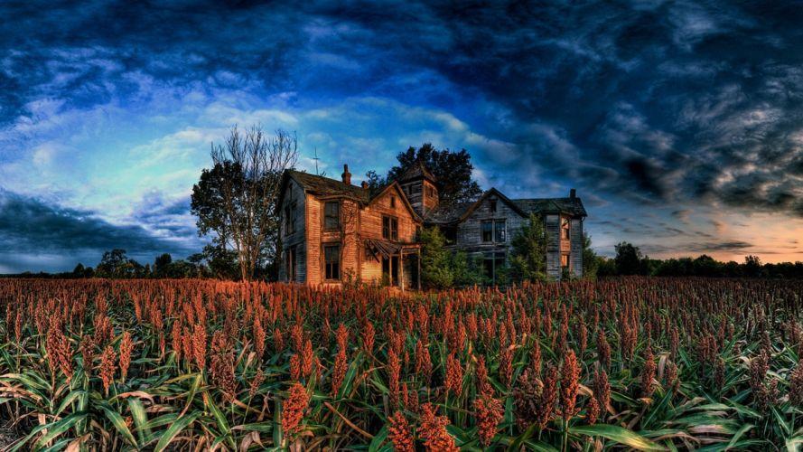 landscapes house cornfield wallpaper