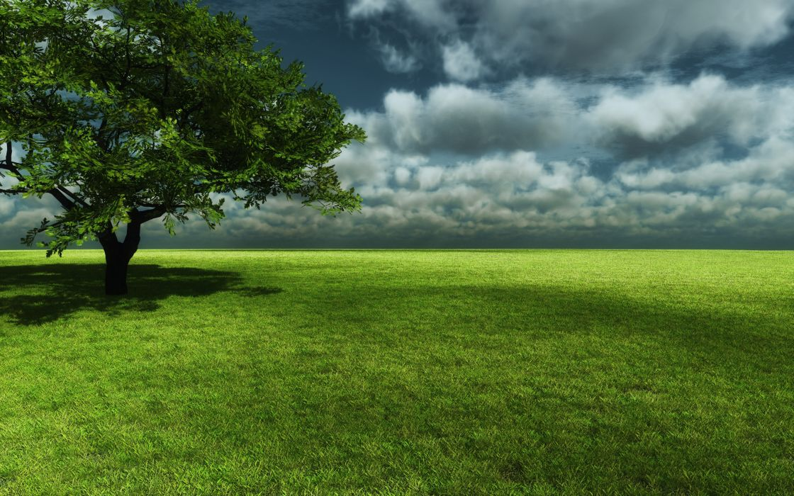 clouds landscapes nature trees garden meadow wallpaper