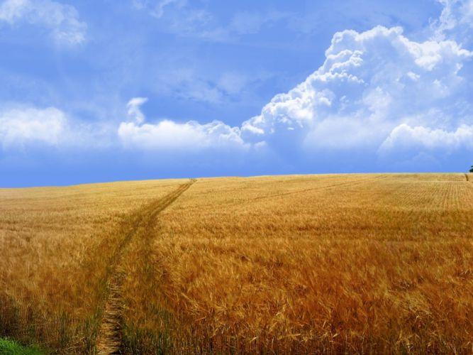 clouds landscapes nature fields wallpaper
