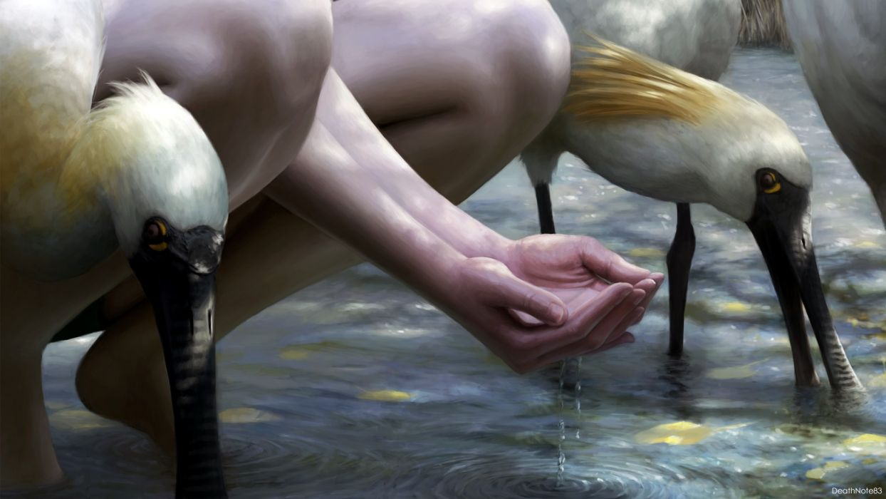 water hands fantasy art drawings drinks rivers Thirst birds wallpaper
