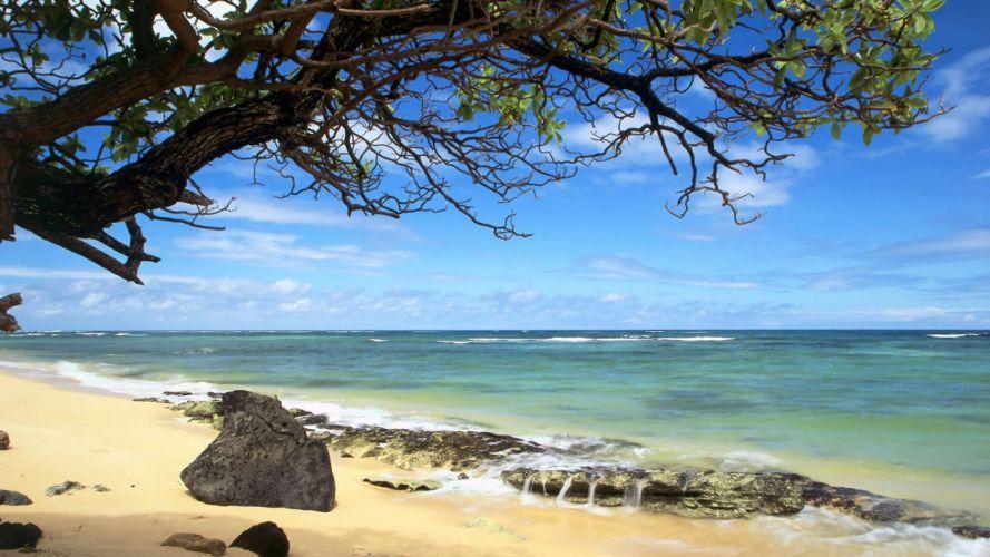 nature beach Hawaii Oahu wallpaper