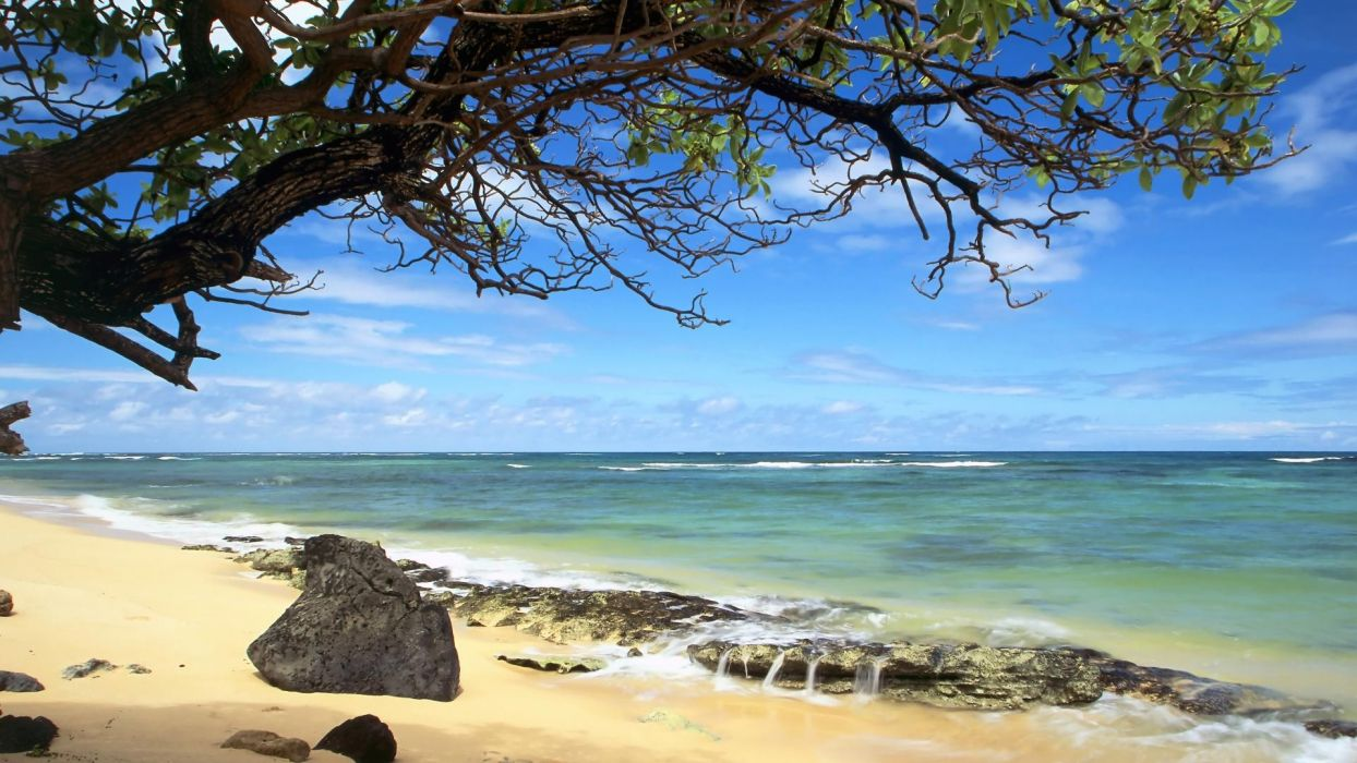 nature beach Hawaii Oahu wallpaper