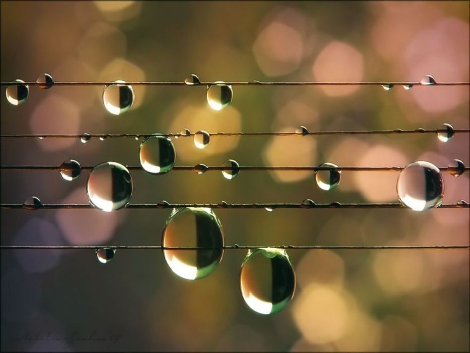 water droplets wire wallpaper