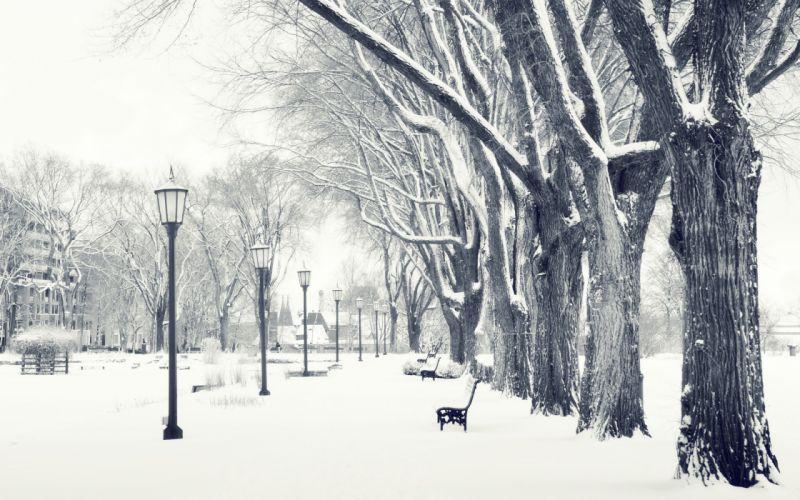 winter snow streets wallpaper