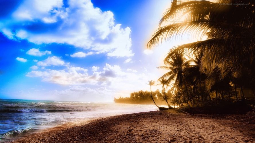 ocean clouds beach sand trees tropical sunlight palm trees skyscapes wallpaper