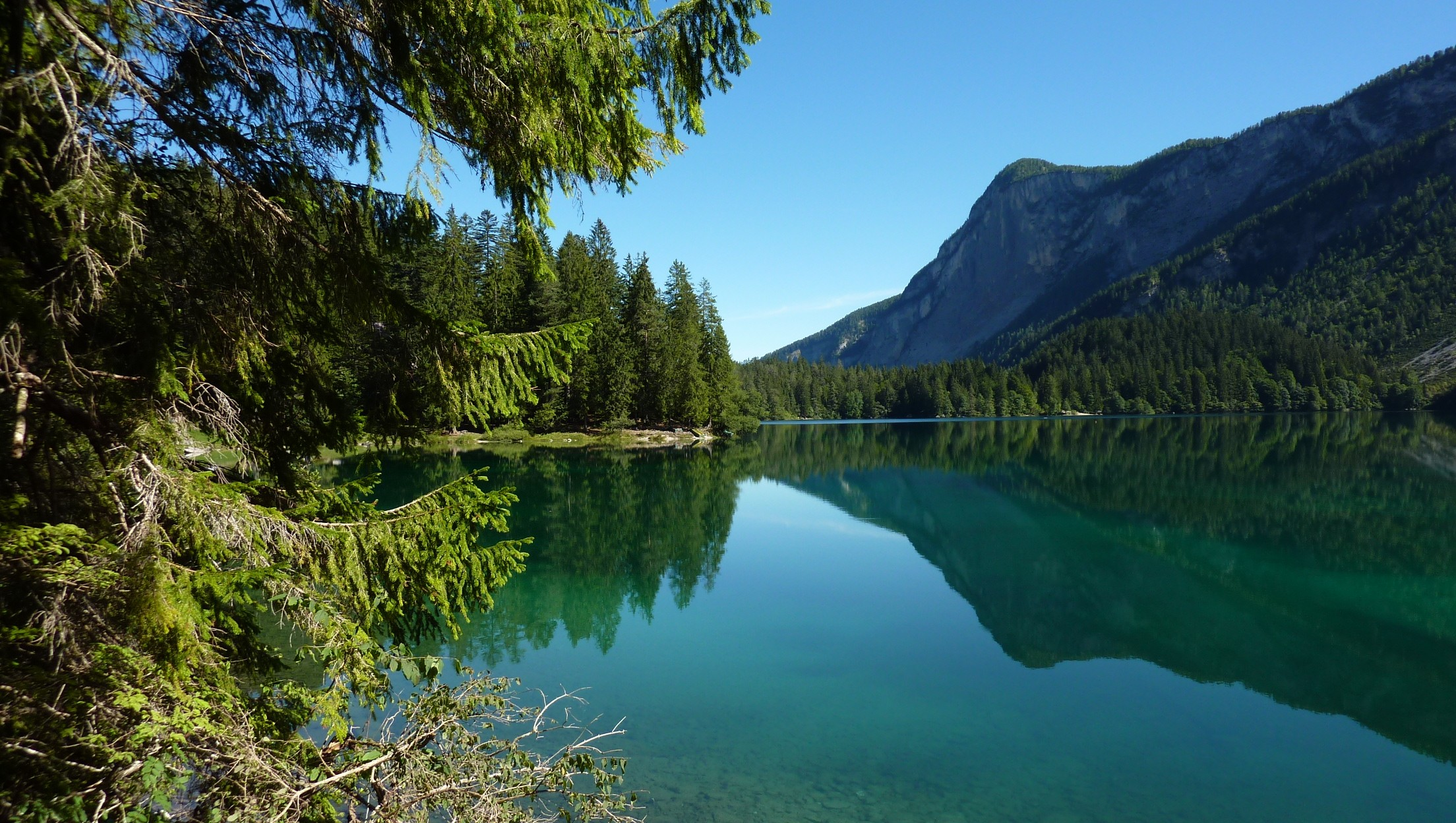 Water Mountains Landscapes Trees Lake Tovel Wallpaper