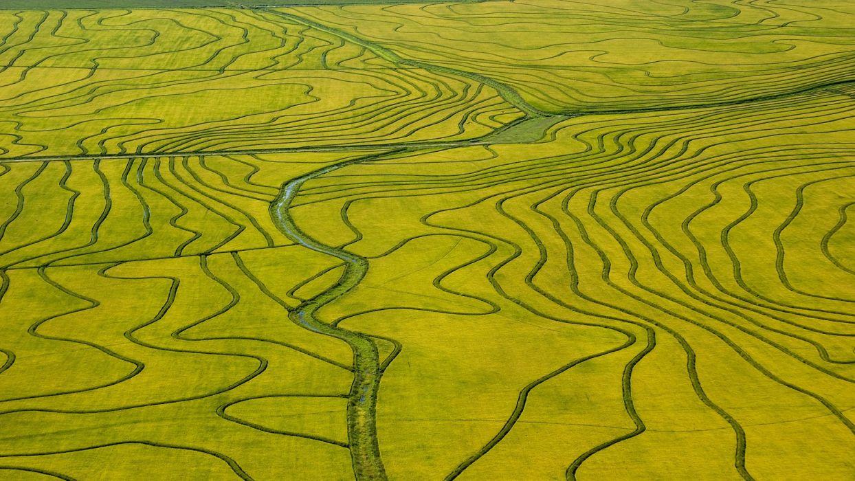 fields rice aerial Uruguay wallpaper