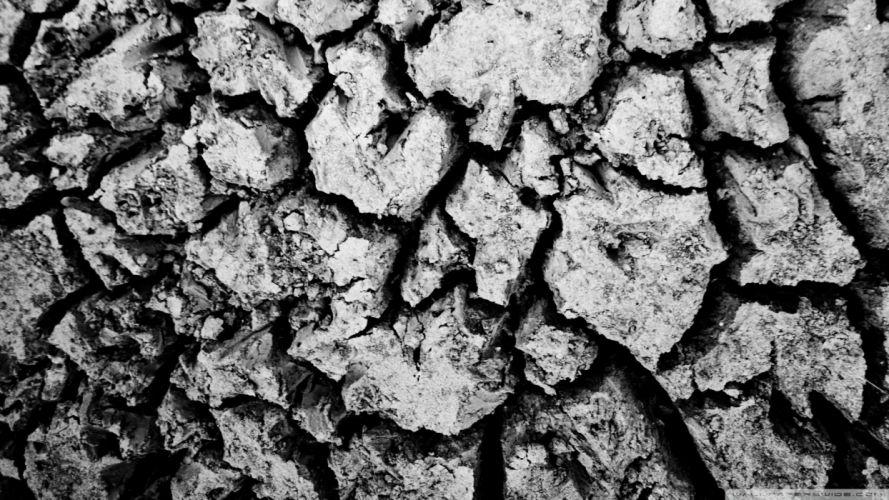 floor black and white nature wallpaper