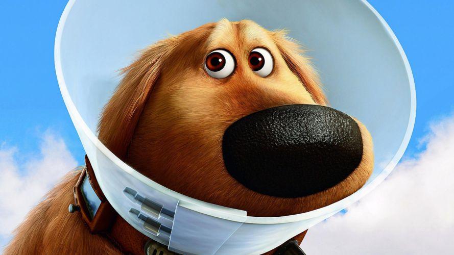dogs Up (movie) shame Elizabethan collar wallpaper