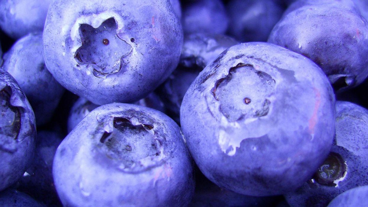nature fruits food plants macro berries blueberries wallpaper