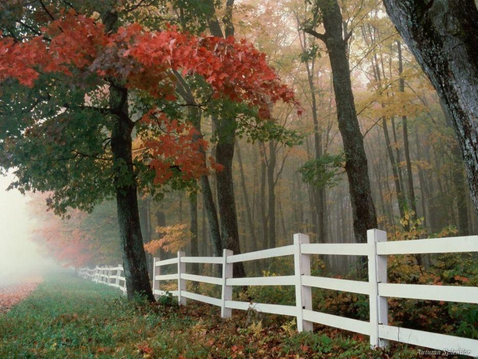 landscapes nature autumn wallpaper