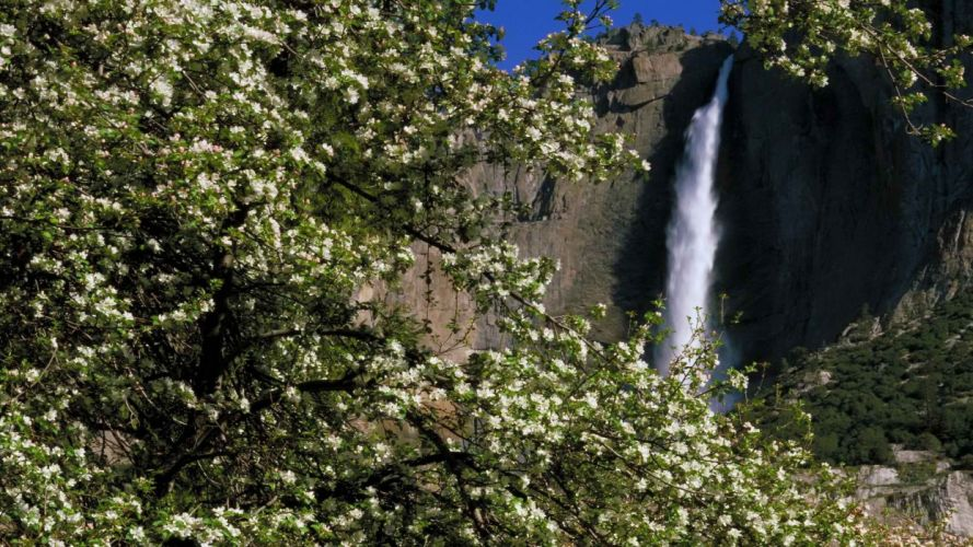 spring (season) falls California Yosemite National Park wallpaper