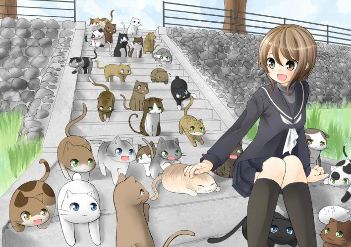 animal cat nekonaka original seifuku wallpaper