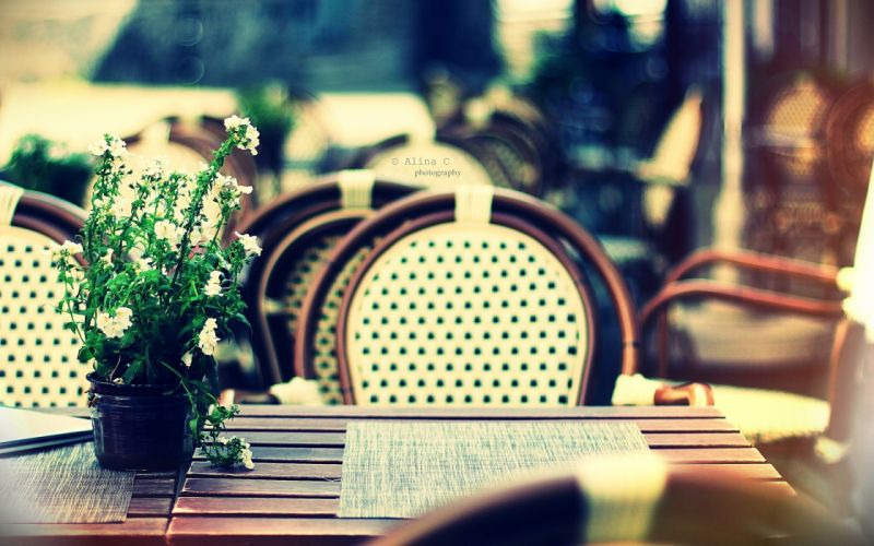 outdoors tables bokeh chairs depth of field white flowers blurred background potted plant wallpaper