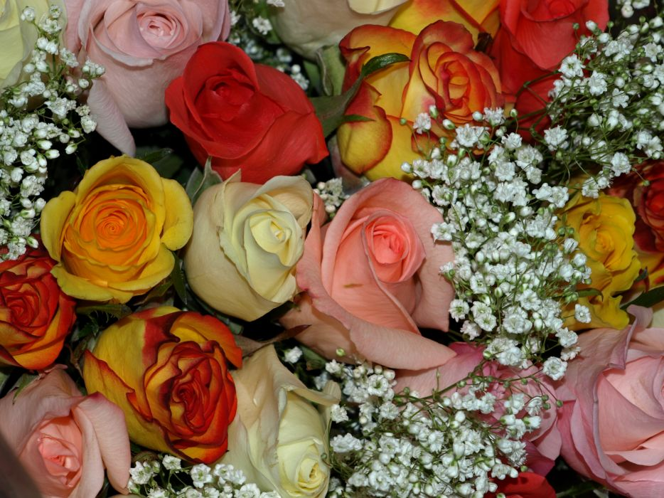 Bouquets Roses Flowers wallpaper
