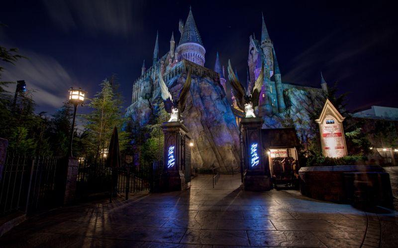 Disneyland Castle Night wallpaper